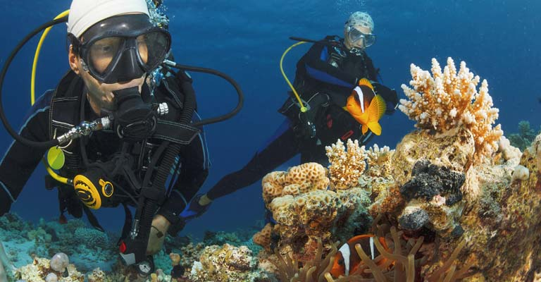 Divers exploring coral reef with scuba gear